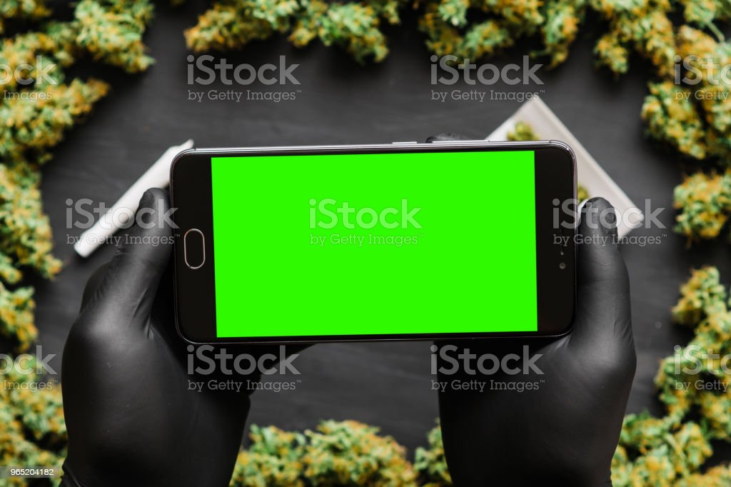 Black smartphone with green screen for chromakey and keying in hand. Weed, Grinder, lighter, joint A lot of marijuana, fresh buds of cannabis many weed. Copy spase Copy-space Top view zbiór zdjęć royalty-free