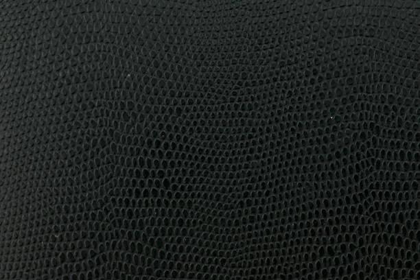 schwarze schlange leder hintergrundtextur - schwarze schlange stock-fotos und bilder