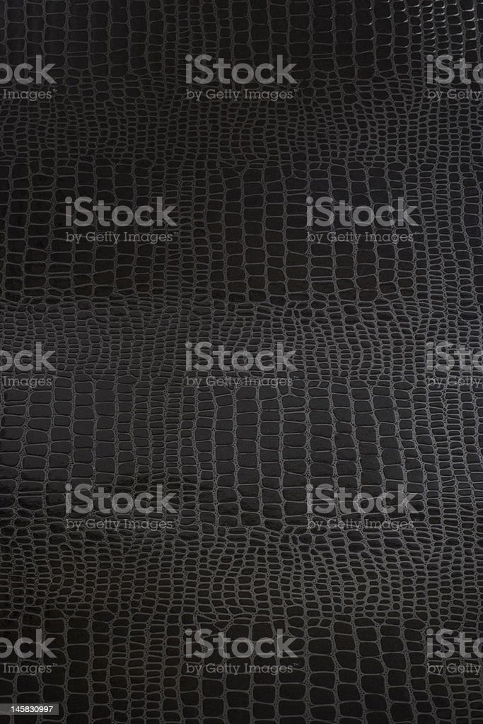 Black Snake Skin royalty-free stock photo
