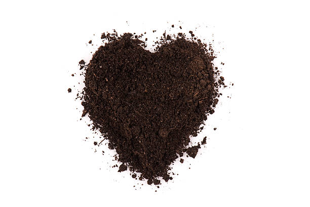 black soil heart - recycling heart bildbanksfoton och bilder
