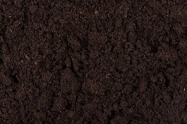 Black soil stock photo