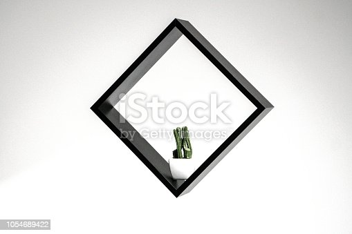 istock black square with a cactus in it isolated on white background, abstract frame work, little plants photography 1054689422