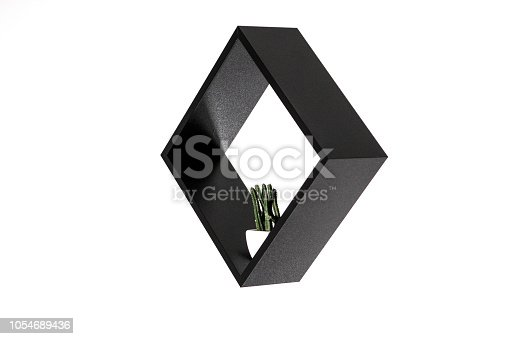 istock black square with a cactus in it isolated on white background, abstract frame work, little plants photography 1054689436