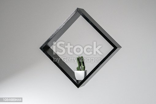 istock black square with a cactus in it isolated on white background, abstract frame work, little plants photography 1054689444