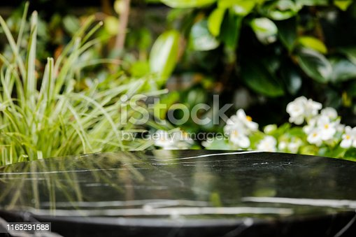 662984994 istock photo Black Stone table top and blur plant banner background 1165291588