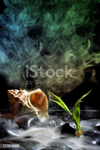istock Black stones and incense stick 121916689