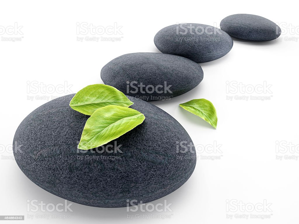 Black stones and leaves isolated stock photo