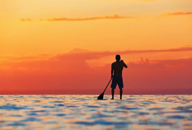 schwarzen sonnenuntergang silhouette stehend auf sup paddel-boarder - stehpaddeln stock-fotos und bilder
