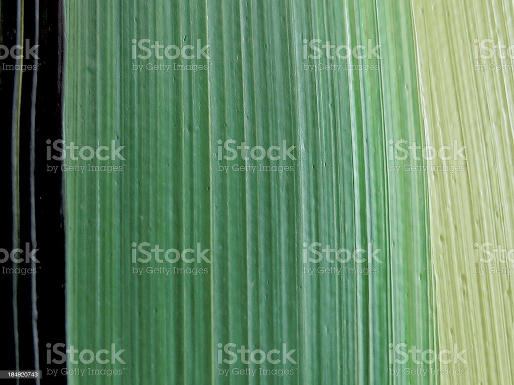 black to green royalty-free stock photo