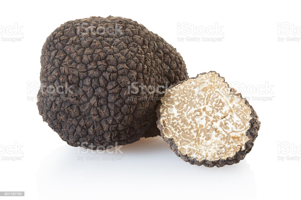 Black truffle and half on white stock photo