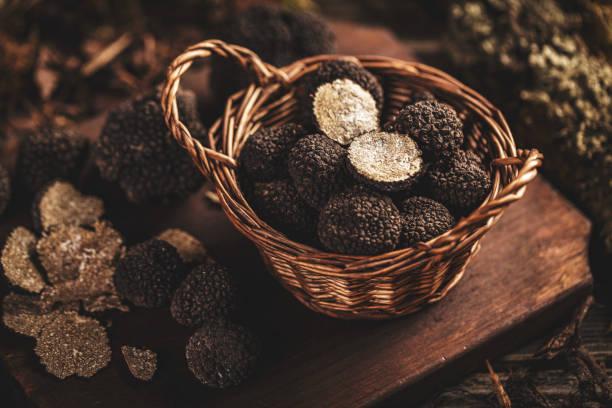 Black truffle mushrooms stock photo
