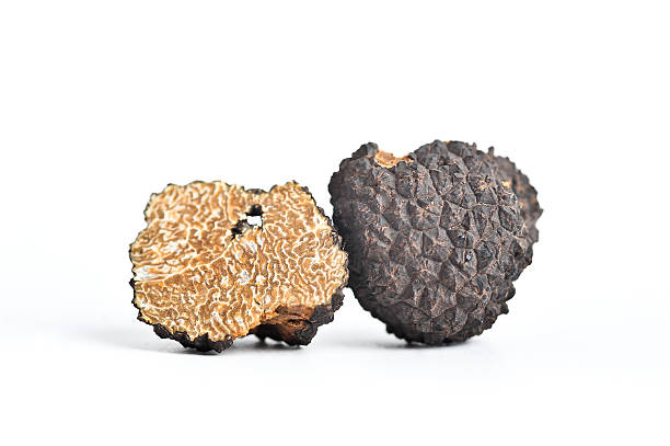 Black Truffle (Italian Tartufo) stock photo