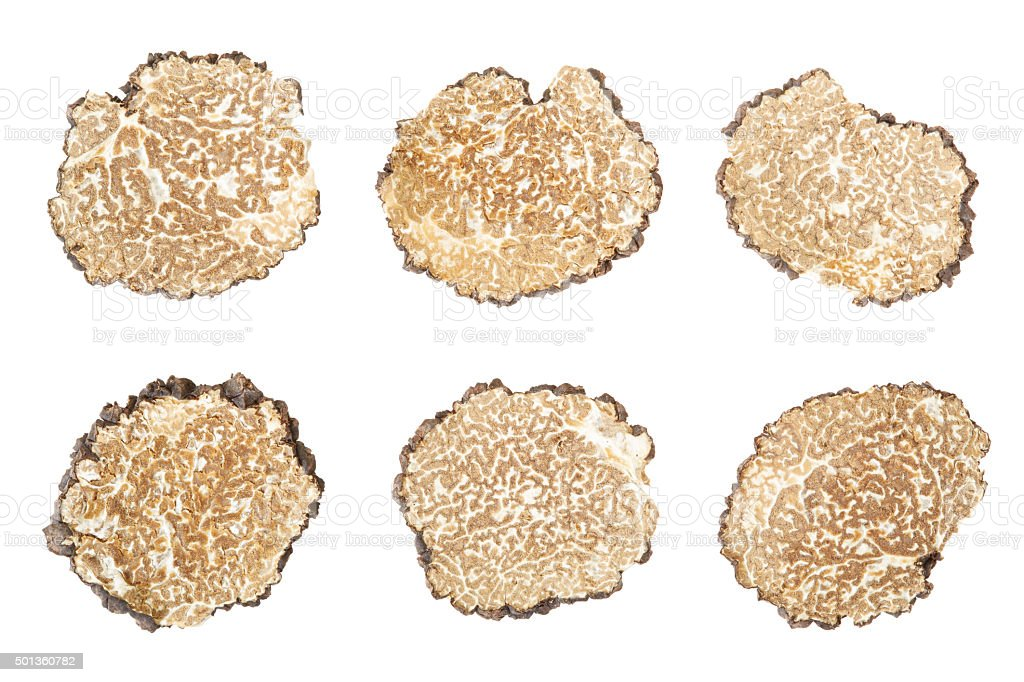 Black truffle slices collection stock photo