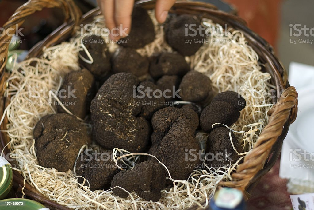 Black Truffles in a Basket stock photo