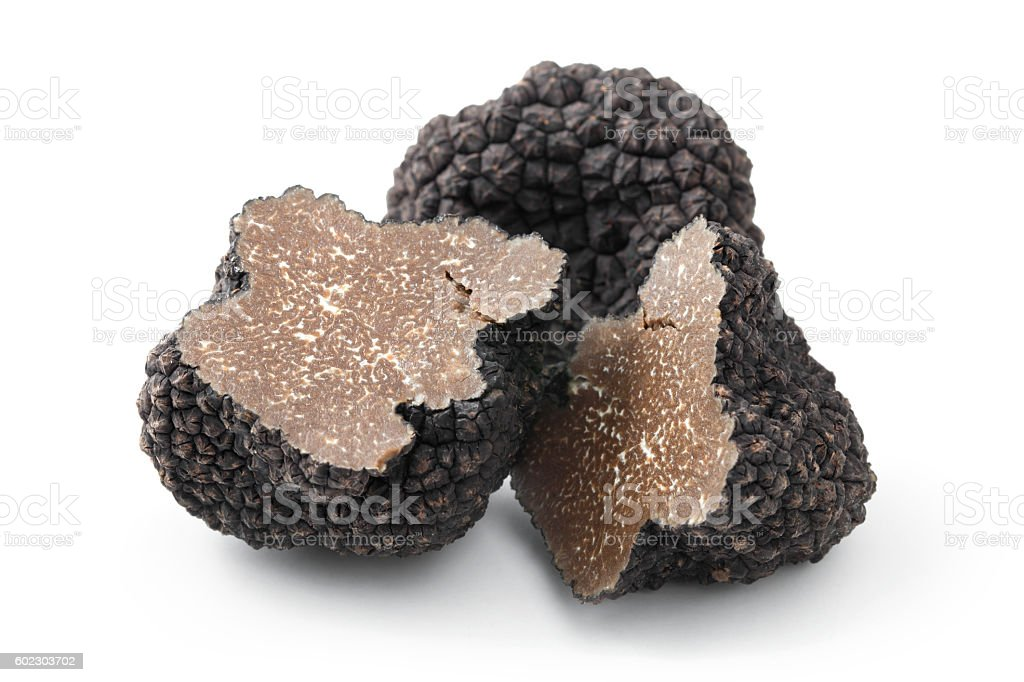 Black truffles on a white background stock photo