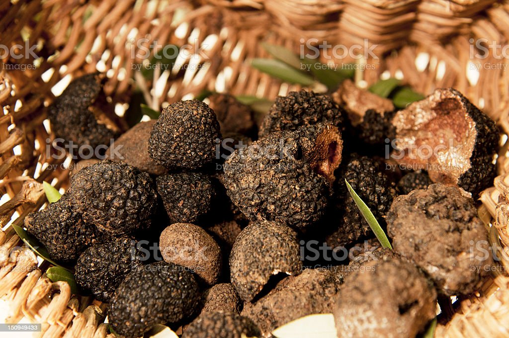 Black truffles royalty-free stock photo