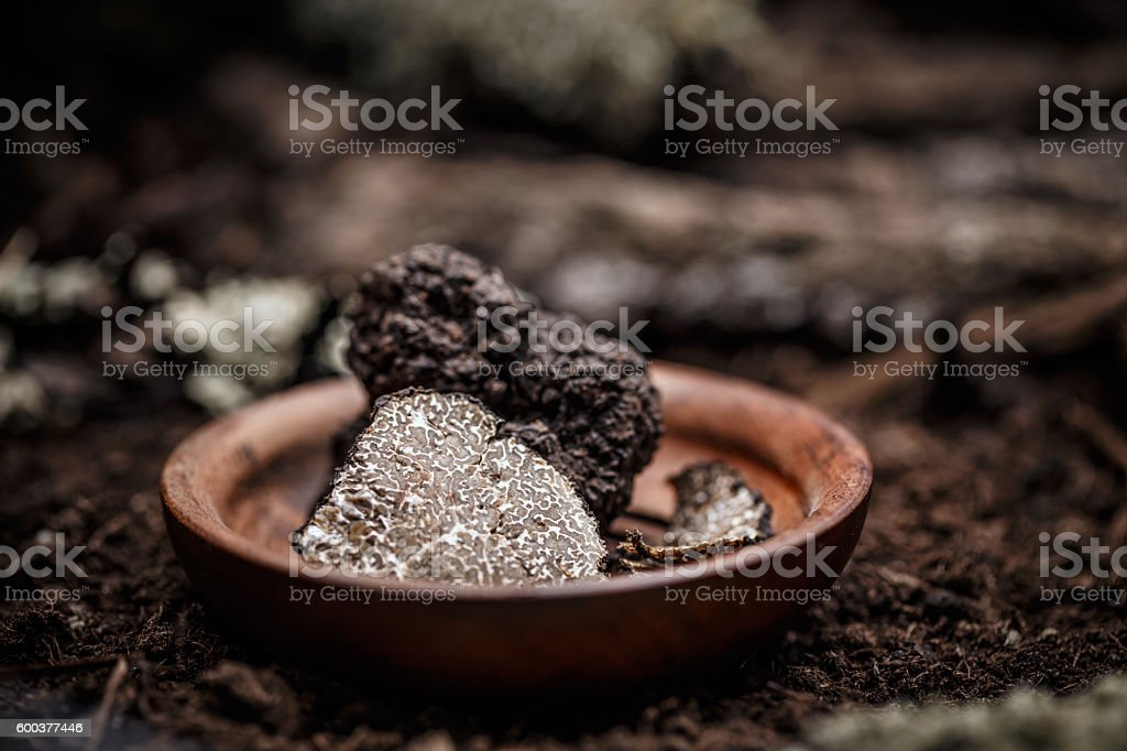 Black truffles slices stock photo