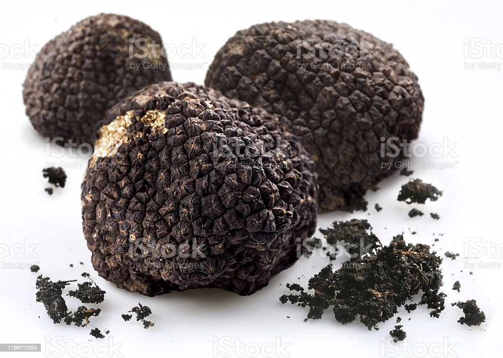 Black truffles with the pieces of soil stock photo