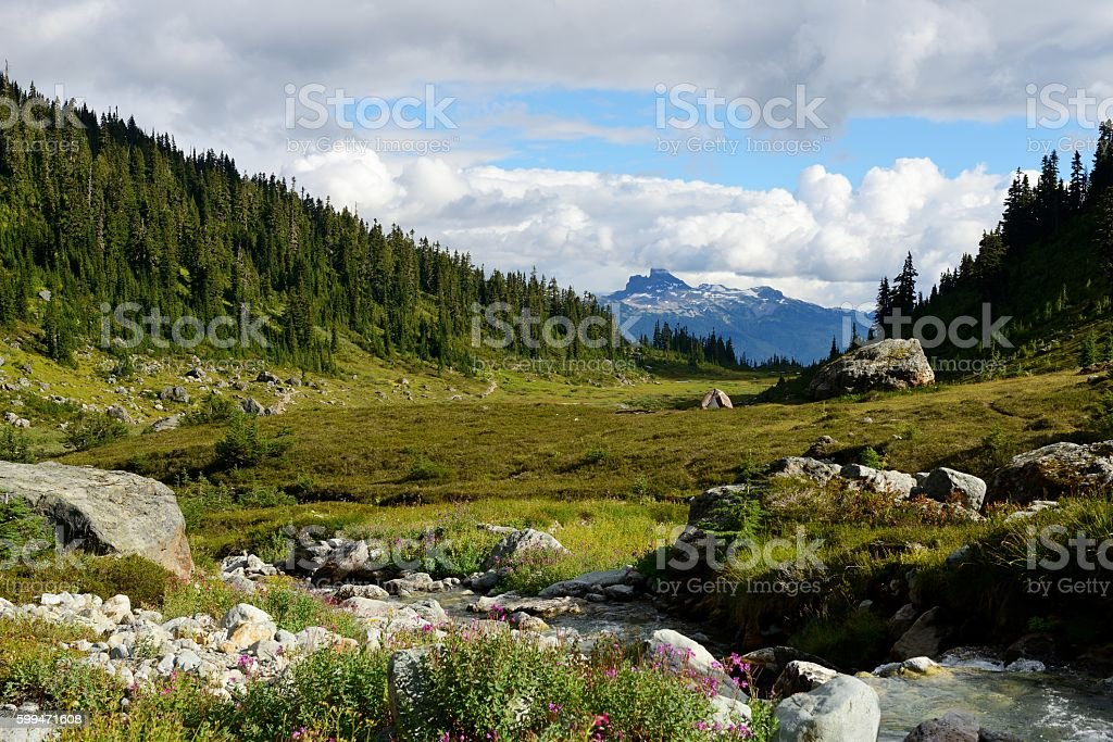 Black Tusk Viewed From Brandywine Meadows stock photo