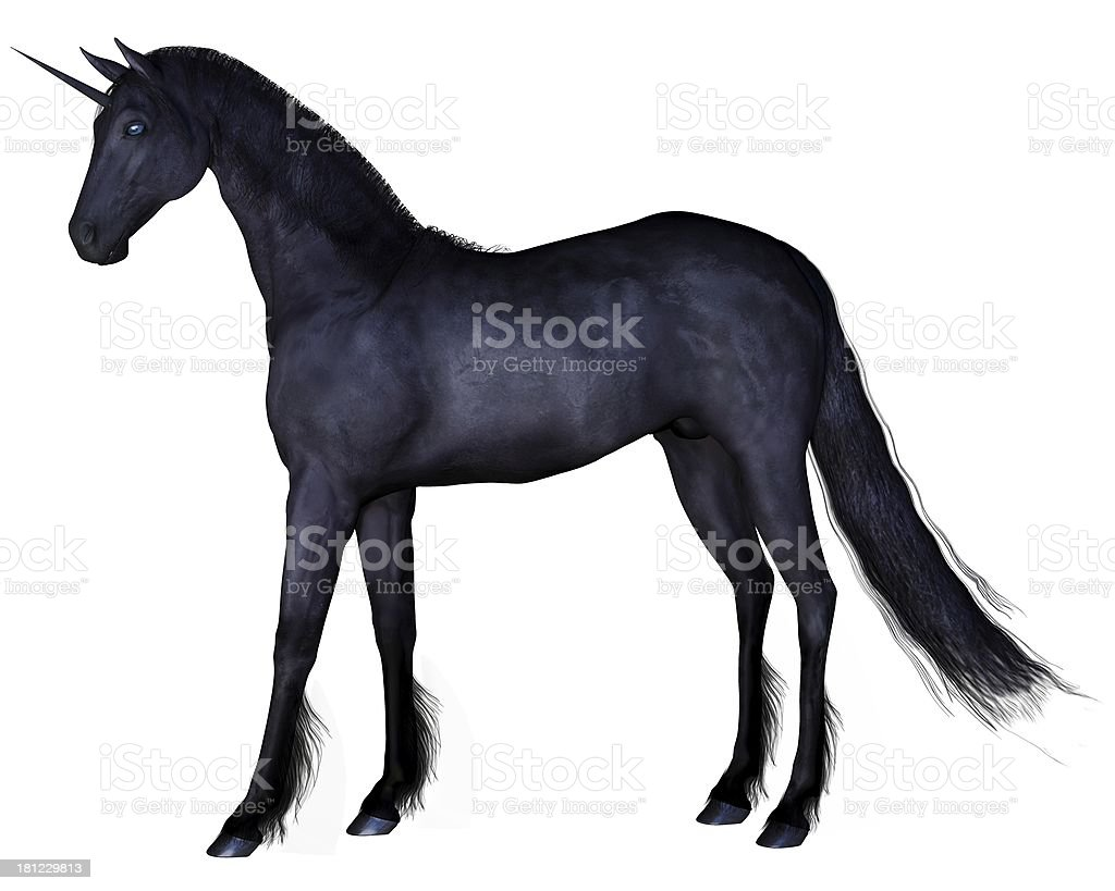 Black Unicorn - standing stock photo