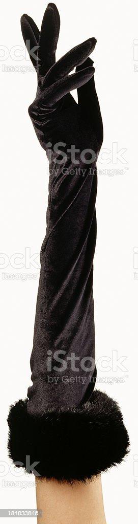 Black Velvet Evening Glove stock photo