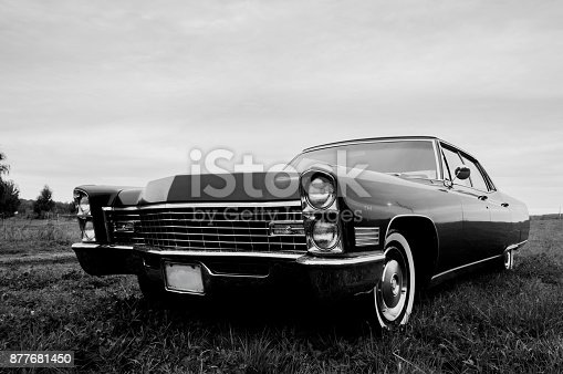 istock Black & White photo of an old 1967 car parked in a field 877681450