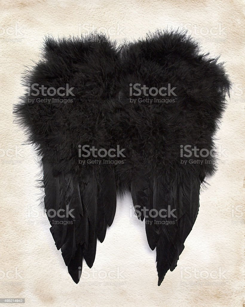 Black wings on paper stock photo