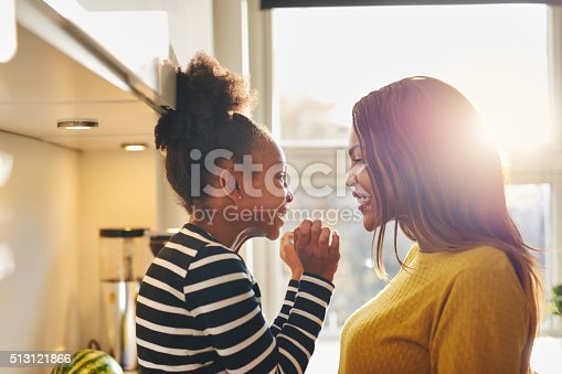 istock Black woman and little daughter smiling 513121866