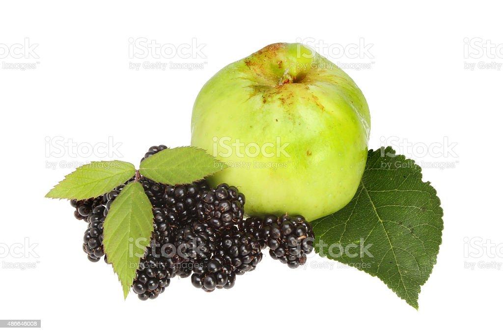 Blackberries and apple stock photo