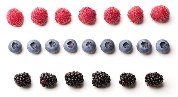 Blackberries, blueberries and raspberries laid out in rows raspberries, blueberries, and blackberries lined up to create three  different fruit borders blackberry fruit stock pictures, royalty-free photos & images