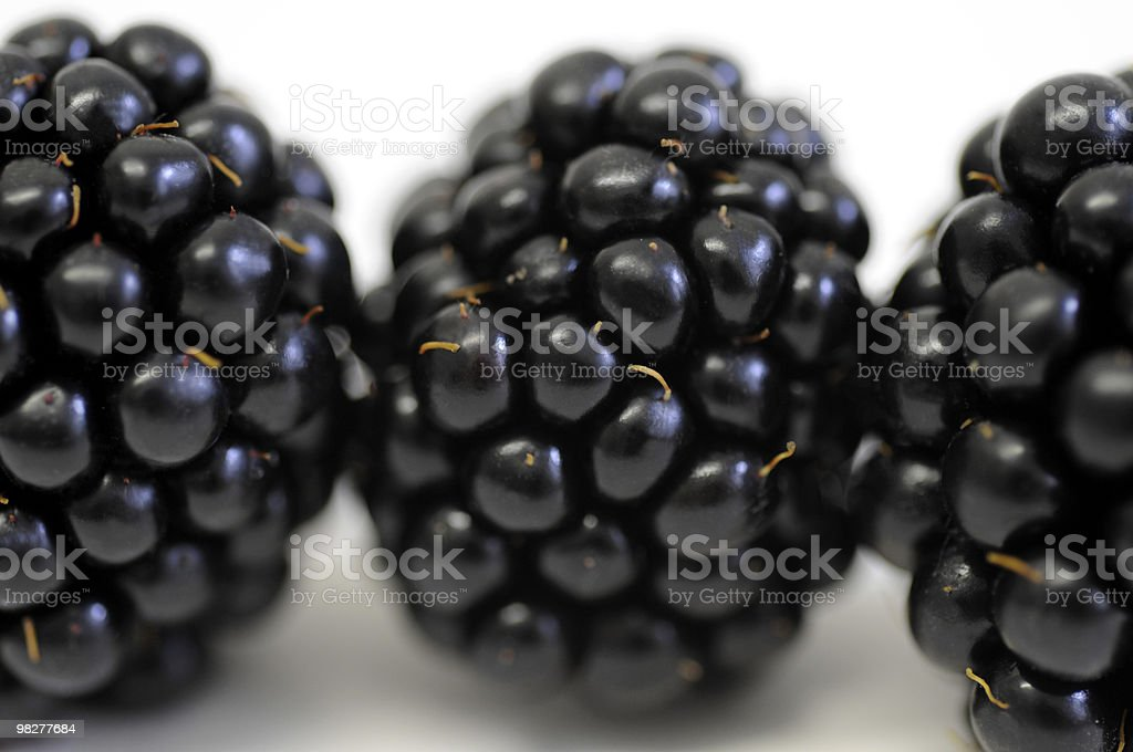 blackberries in a row royalty-free stock photo