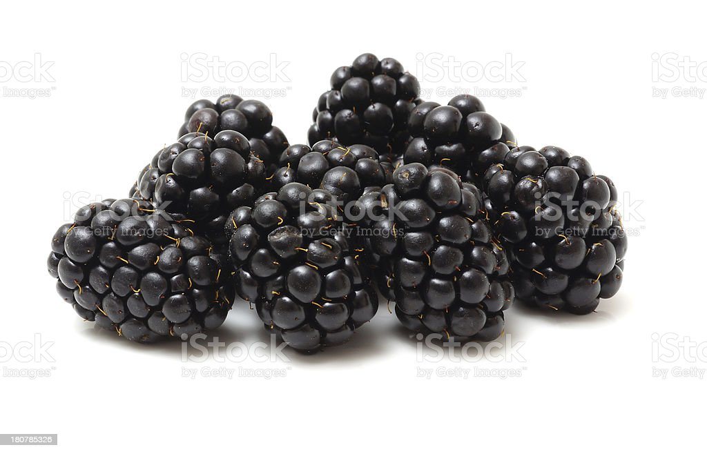 blackberries isolated on white royalty-free stock photo
