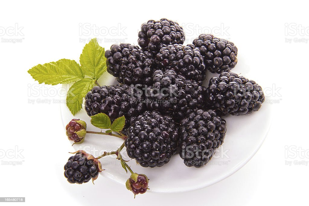 Blackberries on a white saucer royalty-free stock photo