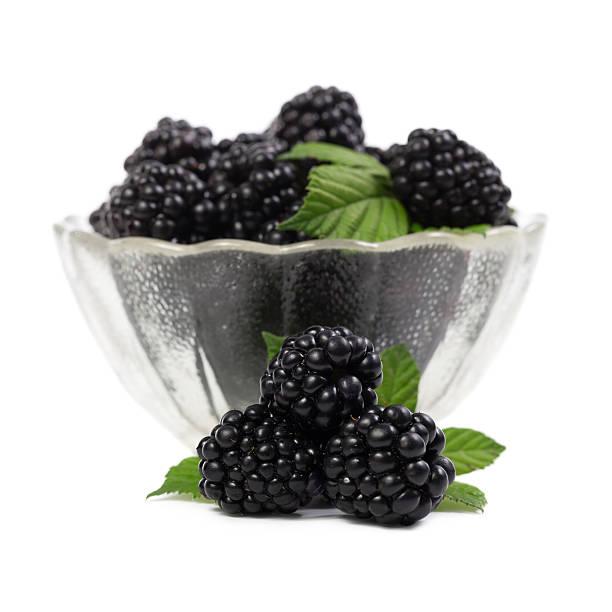 Blackberries on white background stock photo