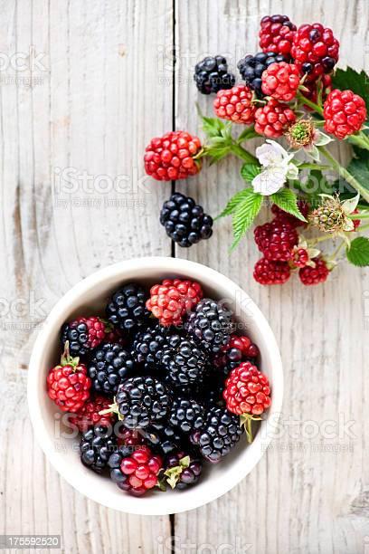 Blackberries picture id175592520?b=1&k=6&m=175592520&s=612x612&h=vwolwtpspx9butwhds1pga8gykhntudg7yfgr8kt9aa=