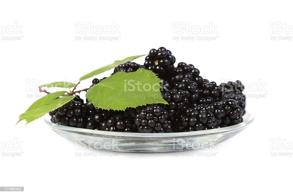 Blackberries with green leaves royalty-free stock photo