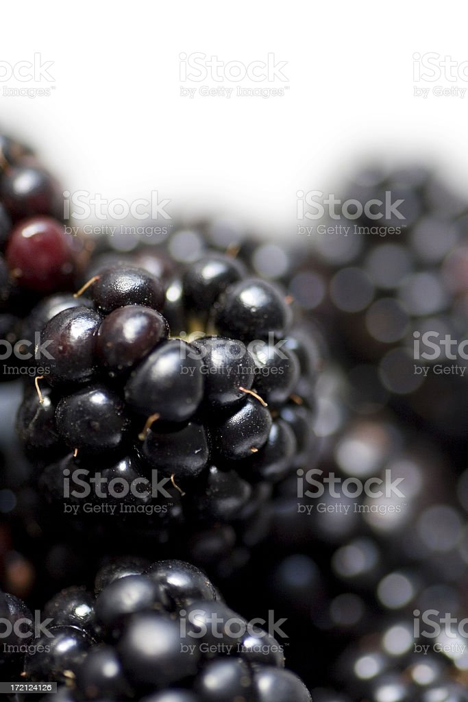 Blackberry background royalty-free stock photo