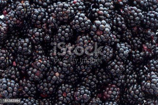 istock Blackberry Background 184383994