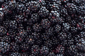 'A close-up photograph of fresh, ripe blackberries.'