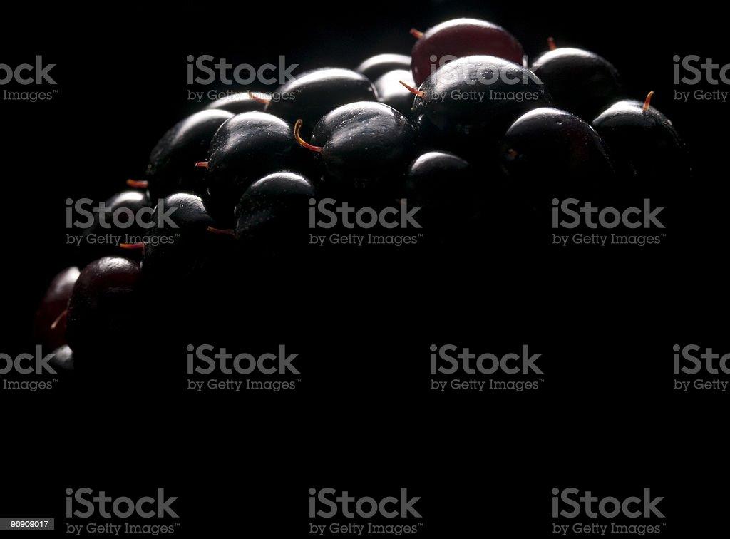 Blackberry Close Up royalty-free stock photo