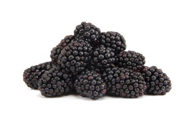 Blackberry-Fruit – Foto