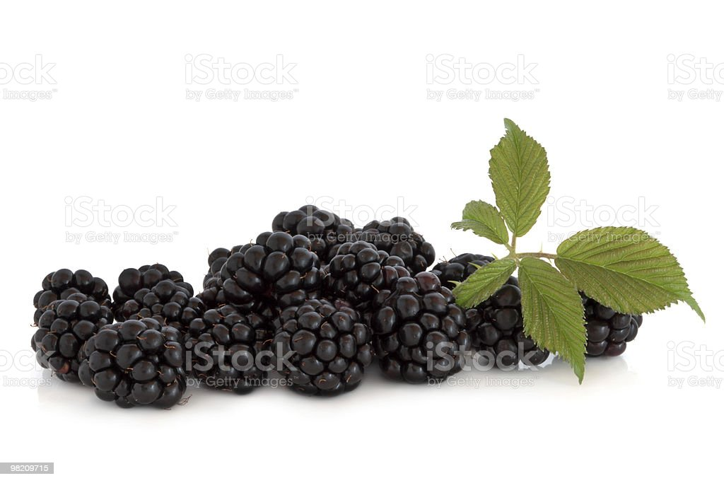 Blackberry frutta foto stock royalty-free