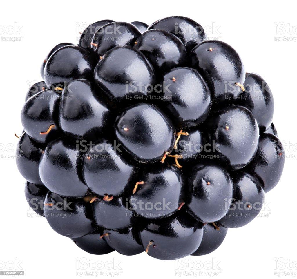 Blackberry isolated on white background stock photo