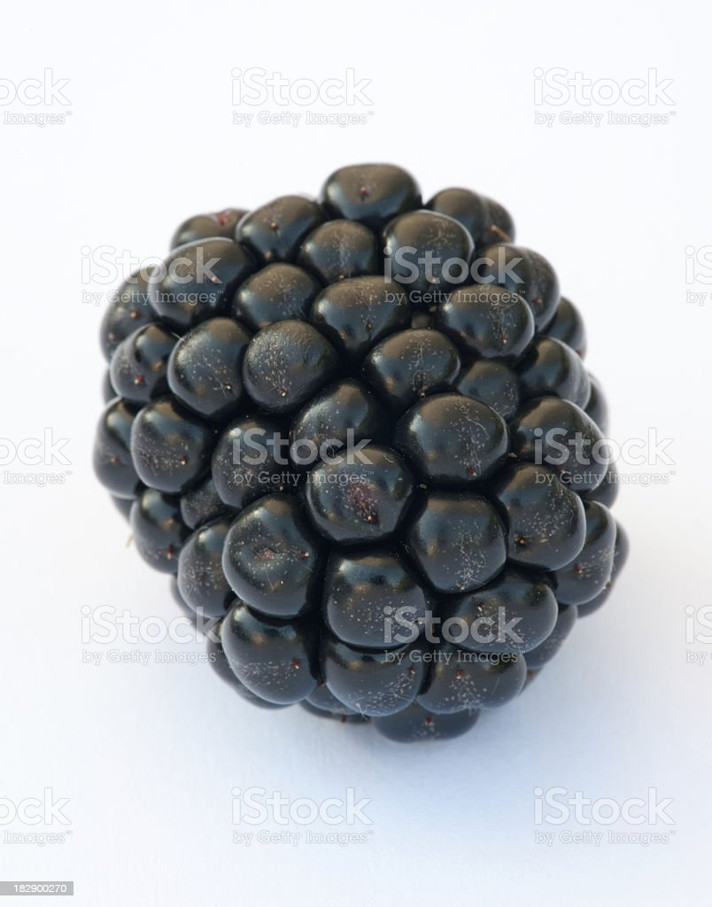 Blackberry Macro - Grown in the Wild (XXXL) royalty-free stock photo