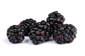 A picture of blackberries on a white background.