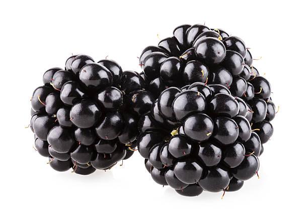 Blackberry – Foto