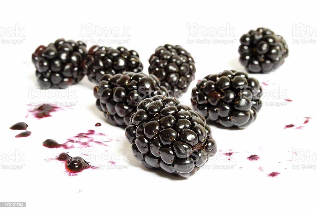 Blackberry Squash royalty-free stock photo