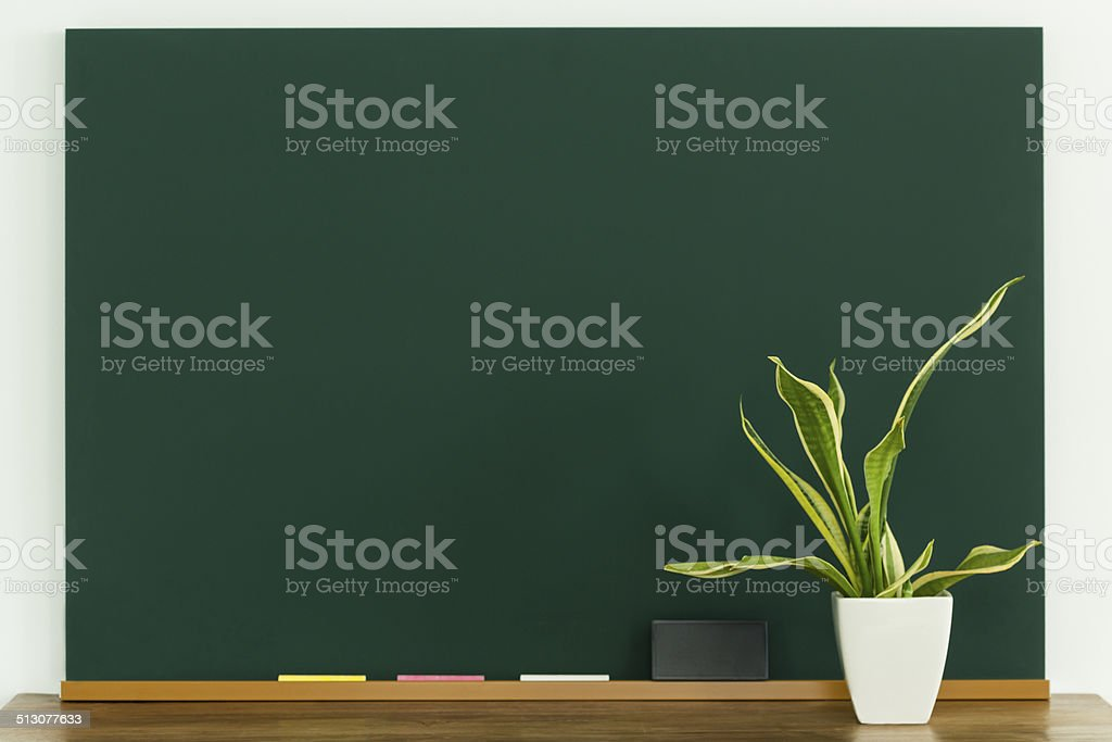 Blackboard and houseplant stock photo