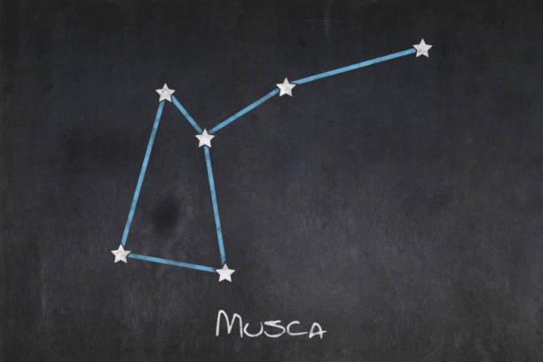 Blackboard - Musca constellation stock photo