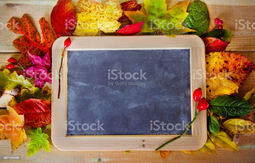 blackboard with autumn leaves and berries on the table stock photo